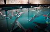 piscine pour les cours d'aquabiking
